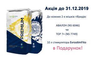 Передноворічна акція на соняшники Євросем!