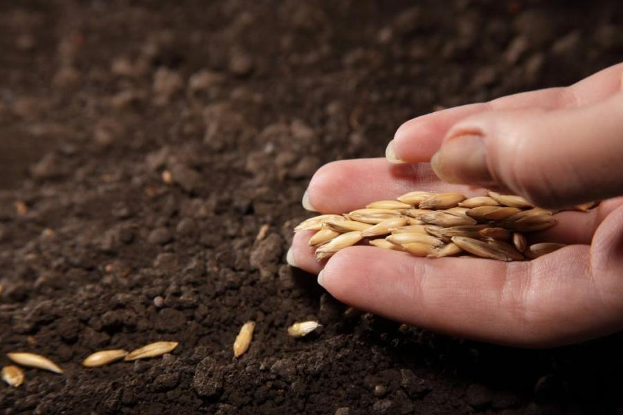 Государственная программа финансовой поддержки развития фермерских хозяйств>