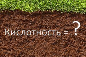 Как определить кислотность почвы без химреактивов