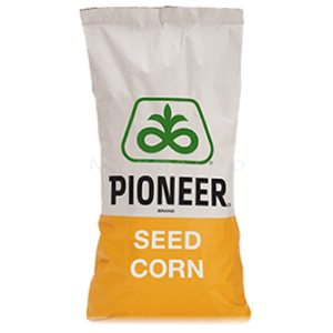 Семена кукурузы П8659 (P8659)